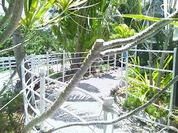 Pvc Fences Hometalk