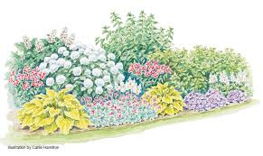 four season hydrangea border garden gate
