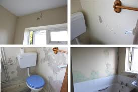 how to remove mould before painting