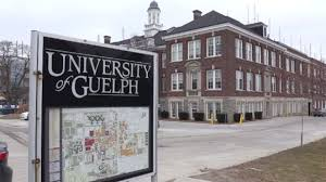 U of G spent $600K to refresh school's branding, without taking ...