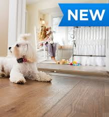 Indoor Fence Barrier Solutions For Dogs And Cats The Invisible Fence Brand