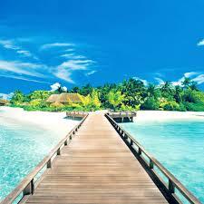 great beach in maledives whatsapp dp