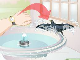 3 ways to clean a birdcage wikihow