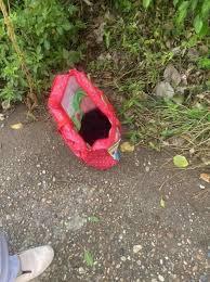 Hà Nội: Bé trai sơ sinh còn nguyên dây rốn bị bỏ rơi cạnh trạm y ...