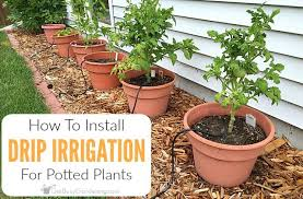 drip irrigation system for potted plants
