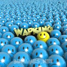 wapking as a 3d wallpaper