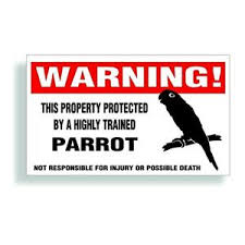 Warning Decal Trained Parrot Cockatoo Macaw Bird Cage Bumper Or Window Sticker Ebay