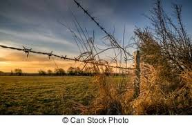 Old Barbed Wire Fence Post Stock Photo Images 384 Old Barbed Wire Fence Post Royalty Free Images And Photography Available To Buy From Thousands Of Stock Photographers
