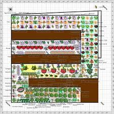 garden plan 2016 20 x 20 replacing