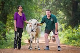 Fundraiser by Tania Smith : Tania & Hamish Cows For Cambodia