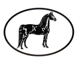 Equine Breed Oval Car Window Decal Black White Sticker Morgan 754888980205 Ebay