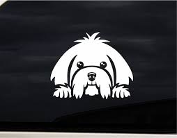 Cute Maltese Puppy Dog Car Decal Sticker For Laptop Window Etsy