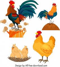 """نتيجة بحث الصور عن صورة ديك الدجاج"""""""