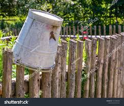 Vintage Tin Bucket On Wooden Fence Stock Photo Edit Now 1151308436