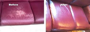scratches leather how to cat on sofa