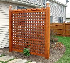 Backyard Privacy Trellis Since We Can T Afford A Fence A Few Of These Around The Yard Might Not Be A Bad Fence Design Privacy Fence Designs Backyard Privacy