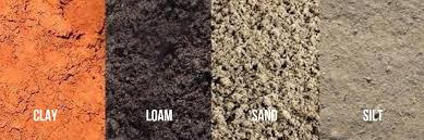 the dirt on dirt what soil do you need