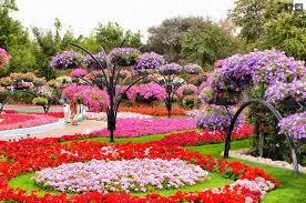 حديقة زهرة الحب في اليابان Images?q=tbn%3AANd9GcToH9ccvp1mEh-OQ3i6lWPlX7lKaqucuSLV252NaOxqWrxCOosH&usqp=CAU