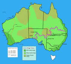 Map Shows The Dingo Fence And The Rabbit Simon Shows You Maps Facebook