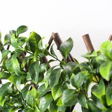 Naturae Decor Expandable Willow Trellis With Gardenia Leaf Trd3672 4000 The Home Depot