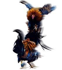 daftar sabung ayam | Lukisan, Seni, Binatang