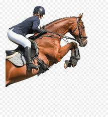 Horse Jumping With Girl Rider Png Free Horse Jumping With Girl Rider Png Transparent Images 20897 Pngio