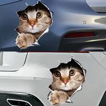 Anime Car Stickers Trendy Anime