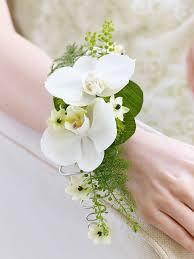 رمزيات ورد ابيض جميل للبنات صور ورد وزهور Rose Flower Images