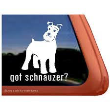 Amazon Com Got Schnauzer Dog Vinyl Window Decal Sticker Automotive