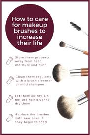 makeup brushes to increase their life