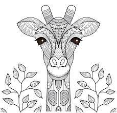35 Unique Animal Doodles Designs Met Afbeeldingen Mandala