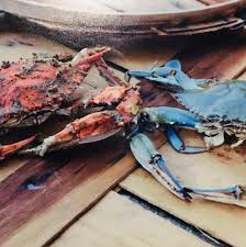 TopFlight Seafood of the World - Posts ...