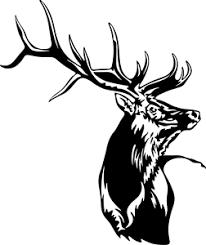 Elk Bull Decal Wl 119 Vinyl Truck Window Stickers Ebay