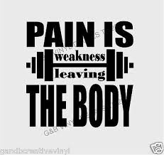 Pain Is Weakness Leaving The Body Workout Gym Vinyl Wall Decal 13 X13 Ebay