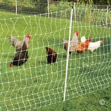 Electric Fence And Netting For Poultry Premier1supplies