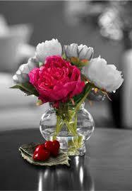 زهور أجمل ورود الحب في العالم