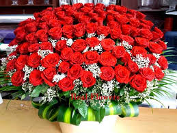 100 red roses for weddings and