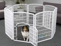 The Best Dog Pens You Can Buy Business Insider