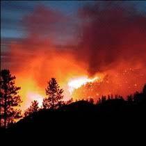 В Україні теж горить ліс | Справжня Варта