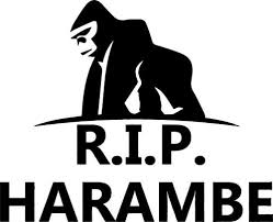 Buy Rip Harambe Sticker White 4 X3 Motorcycle In Hoffman Estates Illinois United States For Us 4 83