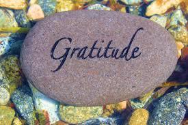 Image result for mindfulness gratitude