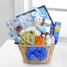 stork delivery baby boy basket efl