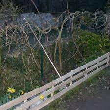 Pallet Fences Your Design Build Can Save You Money 1001pallets