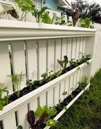 my vertical veggie community garden