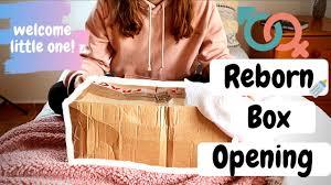 Reborn Box Opening l Realborn Skya Asleep l Reborn Life
