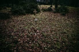 Exploring Hidden London: Abney Park Cemetery   London Cheapo