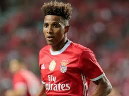 Tottenham sign Gedson Fernandes from Benfica - Gistmattaz