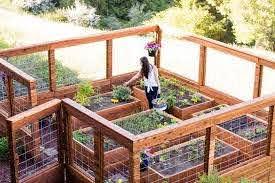 9 Ethereal Garden Zone Fence Stretcher Bar Ideas Building A Raised Garden Garden Planning Making Raised Garden Beds