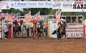 The 2020 Coleman County Cowgirls are Ready to Ride! | News |  colemantoday.com