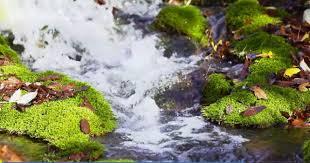 مناظر طبيعية مناظر طبيعية خلابة متحركة Hd Beautiful Landscapes